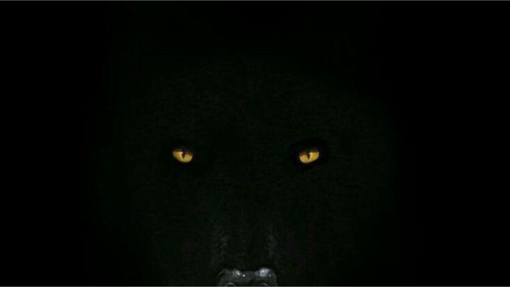 Haunting Howls Of Hanabari - Featured Image