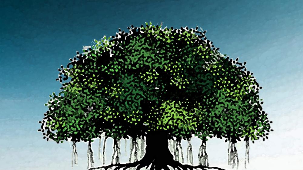 Bhuto's Banyan Tree